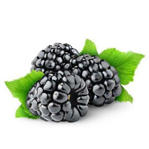 Aroma - Diffuser Oil Black Raspberry